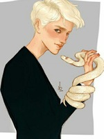 Harry Potter The Malfoy Twin
